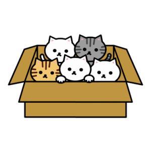 公園の下の猫溜まりに子猫が3匹捨てられたって言われても