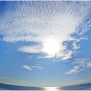 材木座海岸ビーチコ#1
