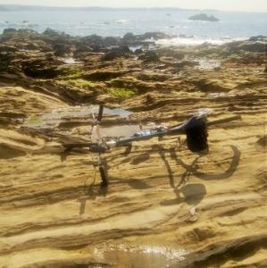 ひさしぶりにプチ海サイ