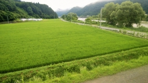 2020夏の会津 南会津、新鳥居峠、矢の原湿原、沼沢湖をへて湯倉温泉へ