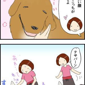 愛され犬と拗ね犬<タイワイワイツアー>
