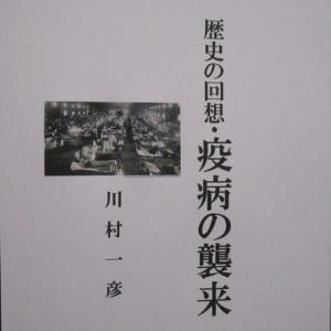 「歴史の回想・疫病の襲来」マゾン電子書籍紹介。角川電子書籍・BOOK★WALKER電書籍
