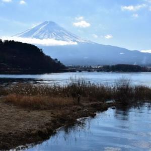 龍之介の日々 富士山を眺めながらあんパンを食す!(家に来て4281日目)