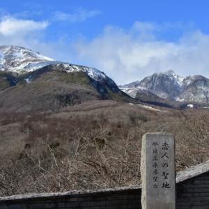 龍之介の日々 恋人の聖地からの眺めは素晴らしかった~!!(家に来て4317日目)