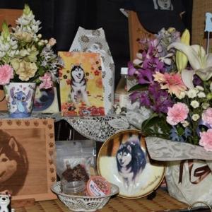 龍之介の日々 お花と過ごしたナナナヌカ・・・ (家に来て4786日目)