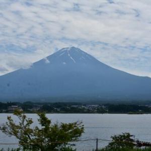 龍之介の日々 富士山が綺麗だったじょ! (家に来て4845日目)