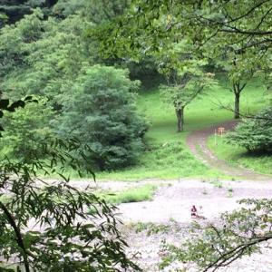 シティーハンター奥多摩湖畔の聖地巡礼!!①『山のふるさと村』までの道(徒歩での行き方)