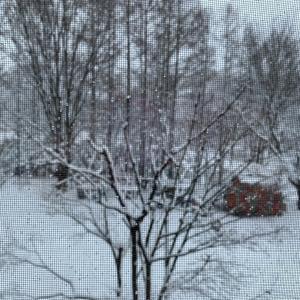 3月の大雪と、ゲゲゲの鬼太郎最終回