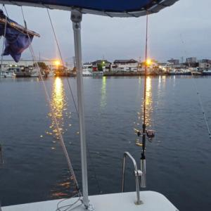 湾奥の釣りジャンキー達2