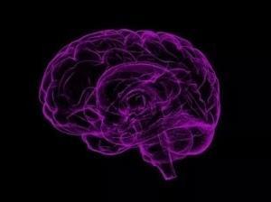 記憶力をアップする簡単な方法、どんな方法だと思いますか?