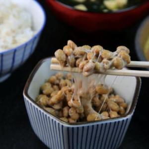 腸活のキホンは発酵食品を毎日摂ることだそうです