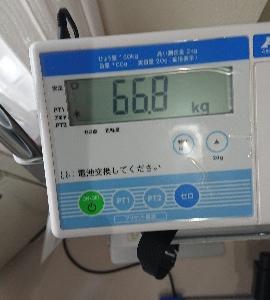 MPNST治療8-25※2020・02・25