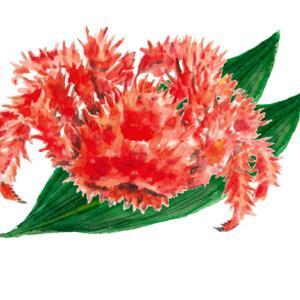 緑が似合う*花咲き蟹