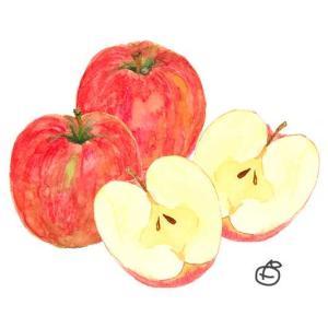 健康の素*りんご