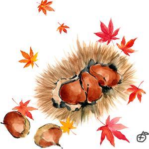 小さい秋がすぐそこまで*
