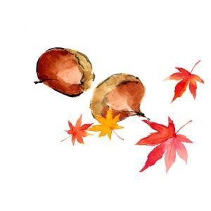 秋を先取り*栗と紅葉
