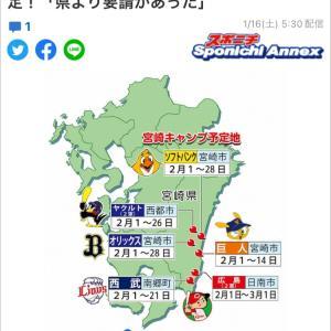 ♡プロ野球宮崎キャンプ♡金丸