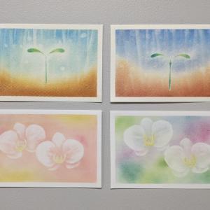 はじめのパステルヒーリングアート講座 私たちの双葉と胡蝶蘭です♪