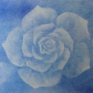 セリエの画用紙に描いた薔薇
