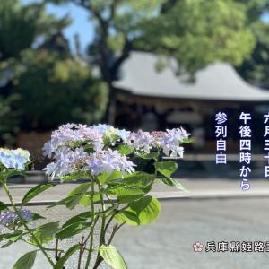 6月30日は夏越の大祓