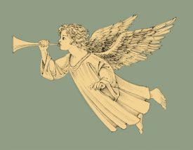 母パトラスカちゃんの幼名マドンナリリーの花言葉、天界の美ってなんだろうと考えていたんですけど…