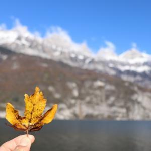 晩秋の Walensee in Switzerland♪