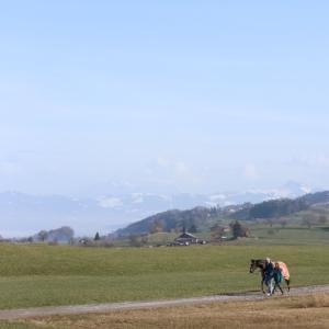 スイス的 Spaziergang in Winter♪