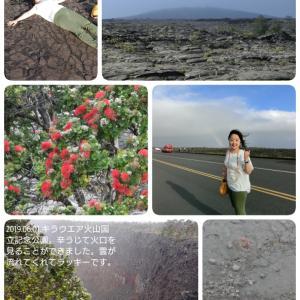ハワイ島⑨ 6/1 キラウエア火山国立公園
