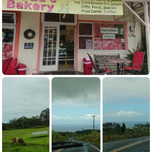 ハワイ島⑬ 6/2 Mr.Ed's Bakeryからフェアモントに戻る