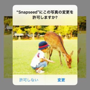 【写真アプリ】Snapseedの基本的な使い方