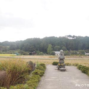 1400年前の即位の地!奈良・明日香村サイクリング