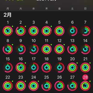 Apple Watchでリングを回して健康習慣! 2月の状況は?