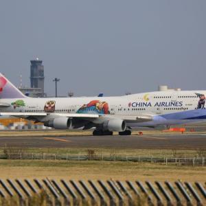今までに撮影した特別塗装機~航空会社別~ 11