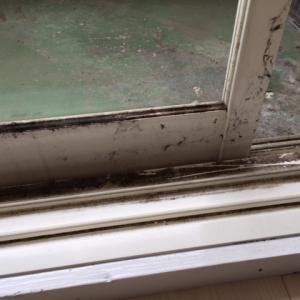 【窓・サッシクリーニング】春先気になる窓やサッシの汚れ 結露による黒カビもしっかり除去します。