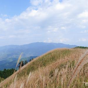 紀見峠から岩湧山(大阪府)