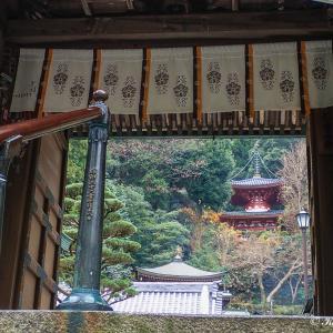 リハビリ山歩き(奈良県)