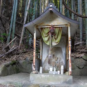 河内飯盛山/中尾根コース