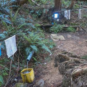 河内飯盛山/滝谷楠水の場コース