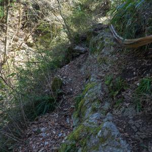 安全登山と自然保護(金剛山/カトラ谷)