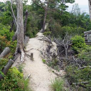 低山で発汗トレ(星田連山)