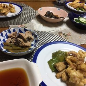 イカの天ぷらと甘長とエリンギの素揚げ、鰹のなまり節と蕗の煮付け