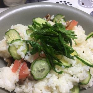今日の「夏の混ぜ寿司」