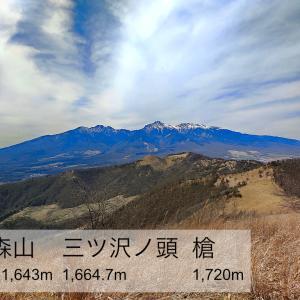 飯盛山 -奥秩父山塊西端の分水嶺を行く