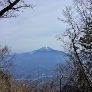 富士見山 -身延町早春の富士景色