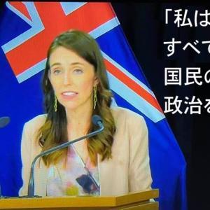 ニュージーランドとニュー爺ランド