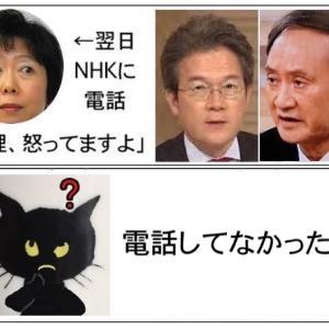 山田真貴子内閣広報官、NHKへの電話を否定〜あったこともなかったことに?!