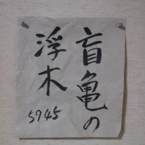 哲学する3 もうきふぼく【盲亀浮木】