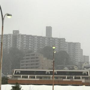雪だーーƪ(˘⌣˘)ʃ