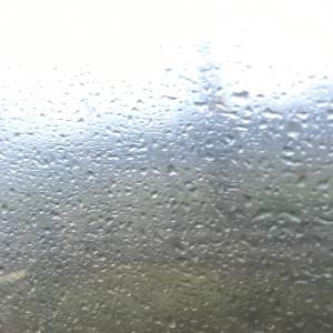豪雨にやられました(@_@)