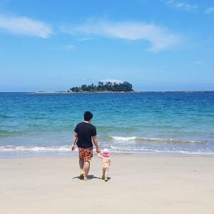 孫と類とジィーノの夏休み